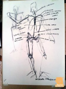 Artist Anatomy Workshop