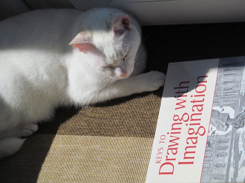 Books on Studio Cat's Reading List