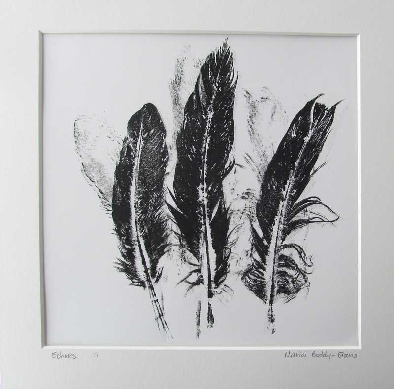Feather Monoprints: Echoes