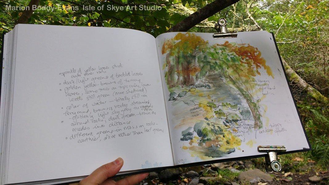 Sketching Uig Woodland Skye