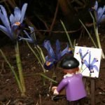 plein-air-painting-among-the-miniature-irises_3241349904_o