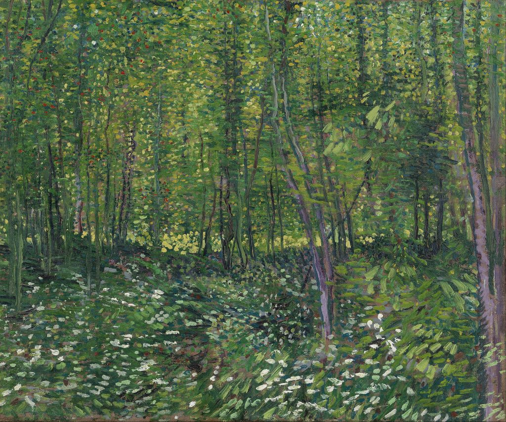 """Van Gogh """"Trees and Undergrowth"""", 1887 painting"""