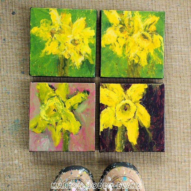 Daffodil Studies #1 to #4 paintings Marion Boddy-Evans