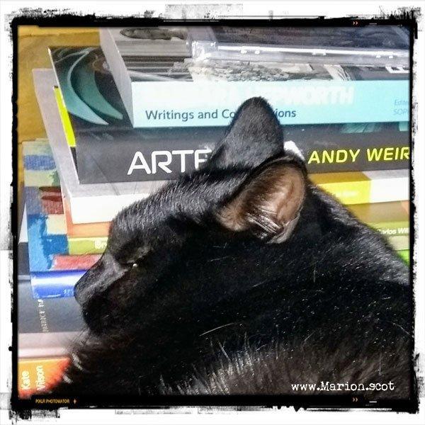 Christmas Art Books 2017 Cat