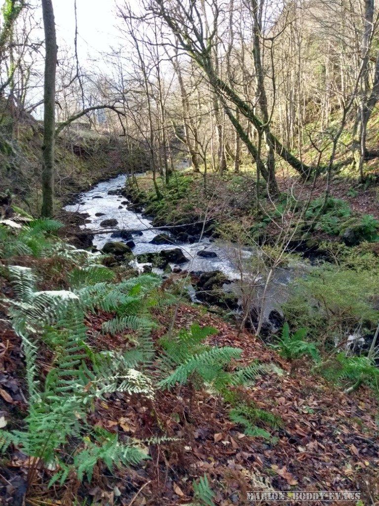 River Rha