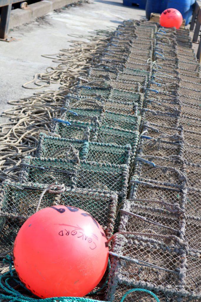 buoy creels uig pier 2