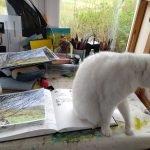 Painting Studio cat helper