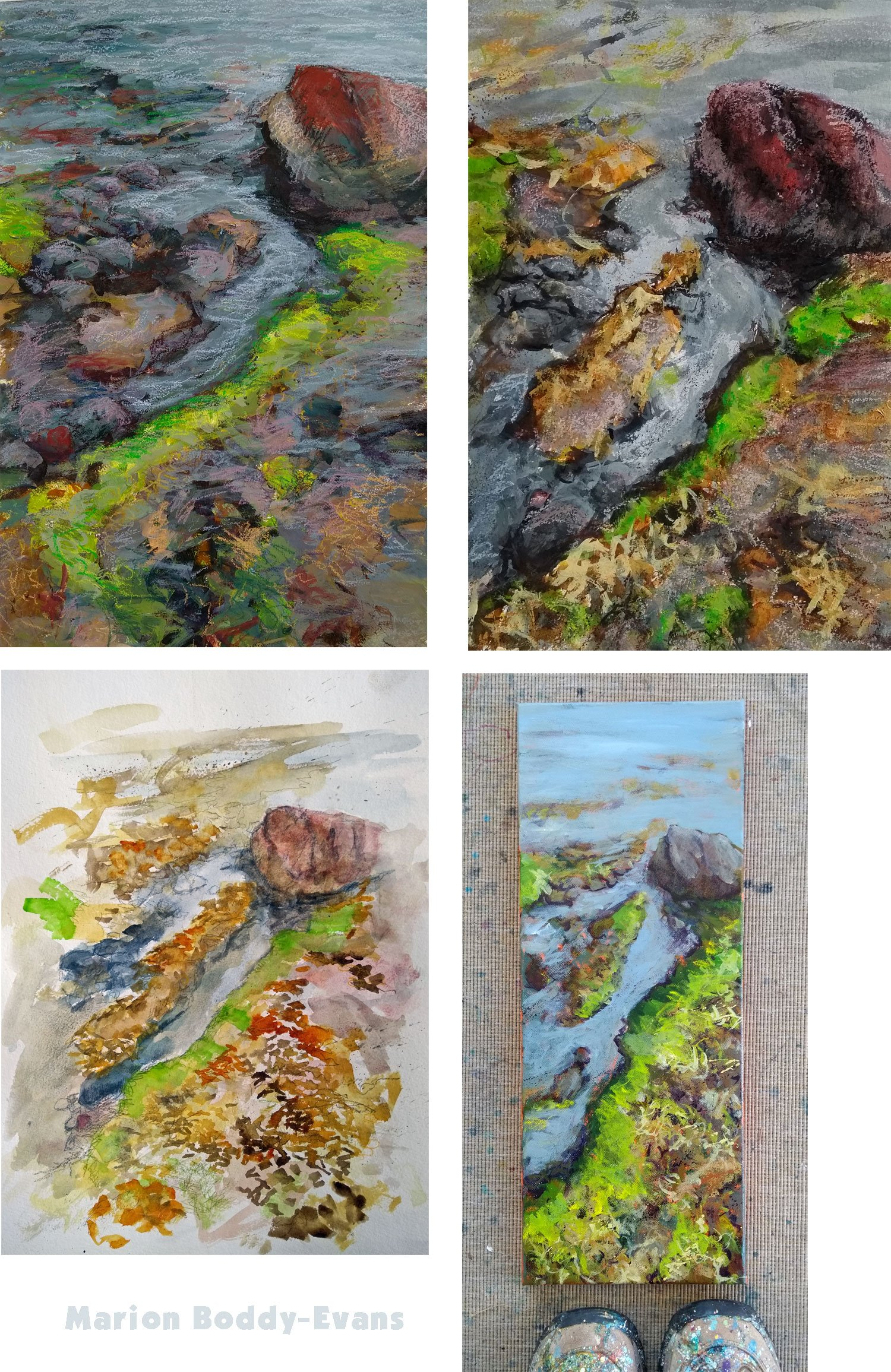 Project Photo Gallery Seaweed Rocky Shore Paintings Marion Boddy Evans