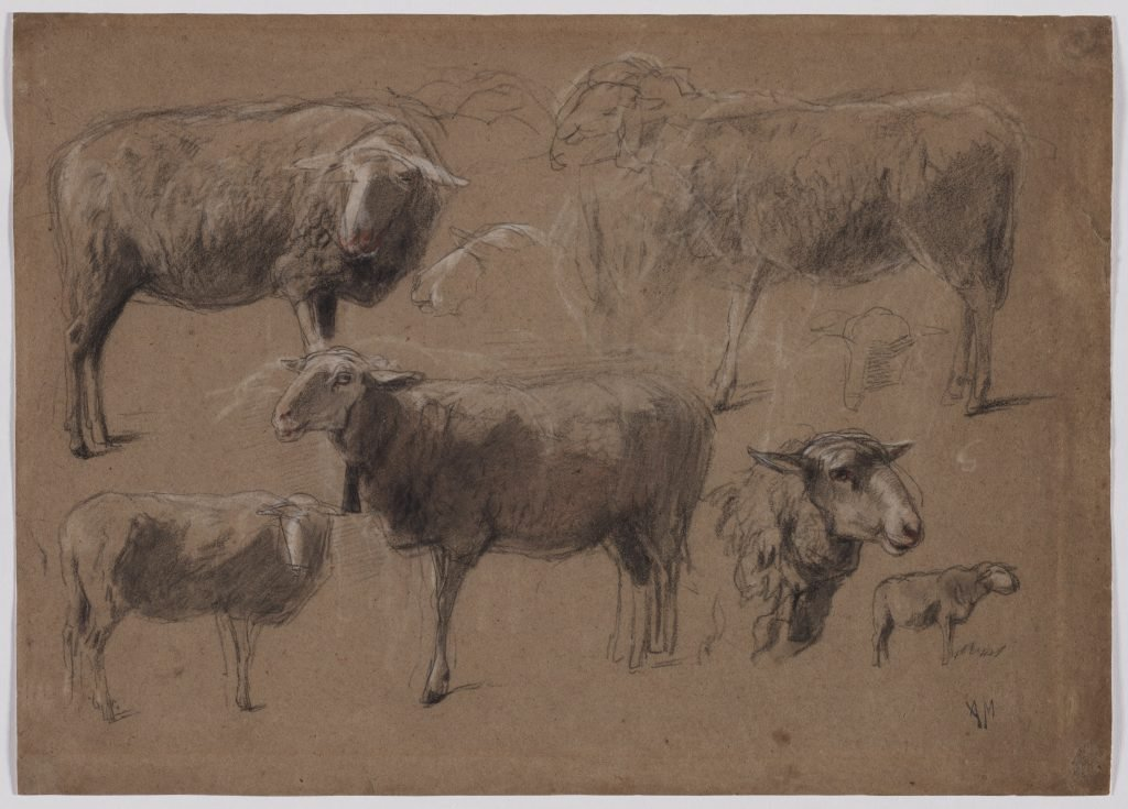 Anton Mauve sheep studies