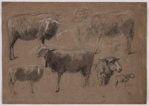 Anton Mauve sheep studies