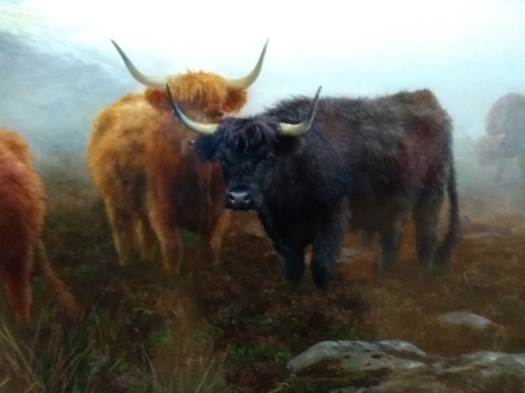 Detail from highland cow painting by Peter Hraham