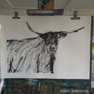 Highland cow painting in ink