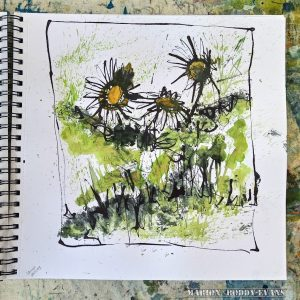 lawn daisies in watercolour and ink
