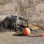 Painting Project Orange Buoy
