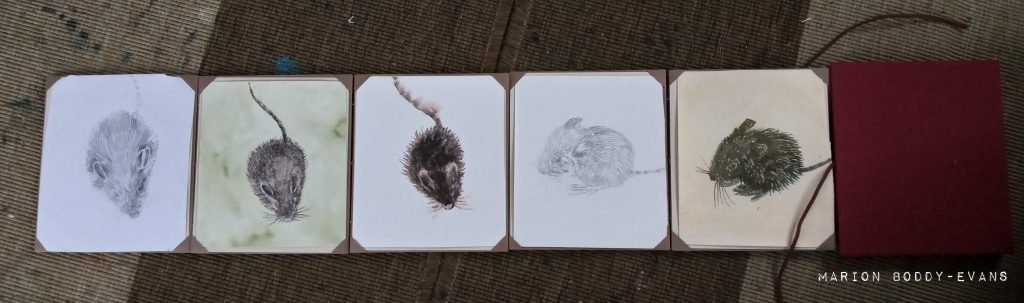 Little Mouse paintings